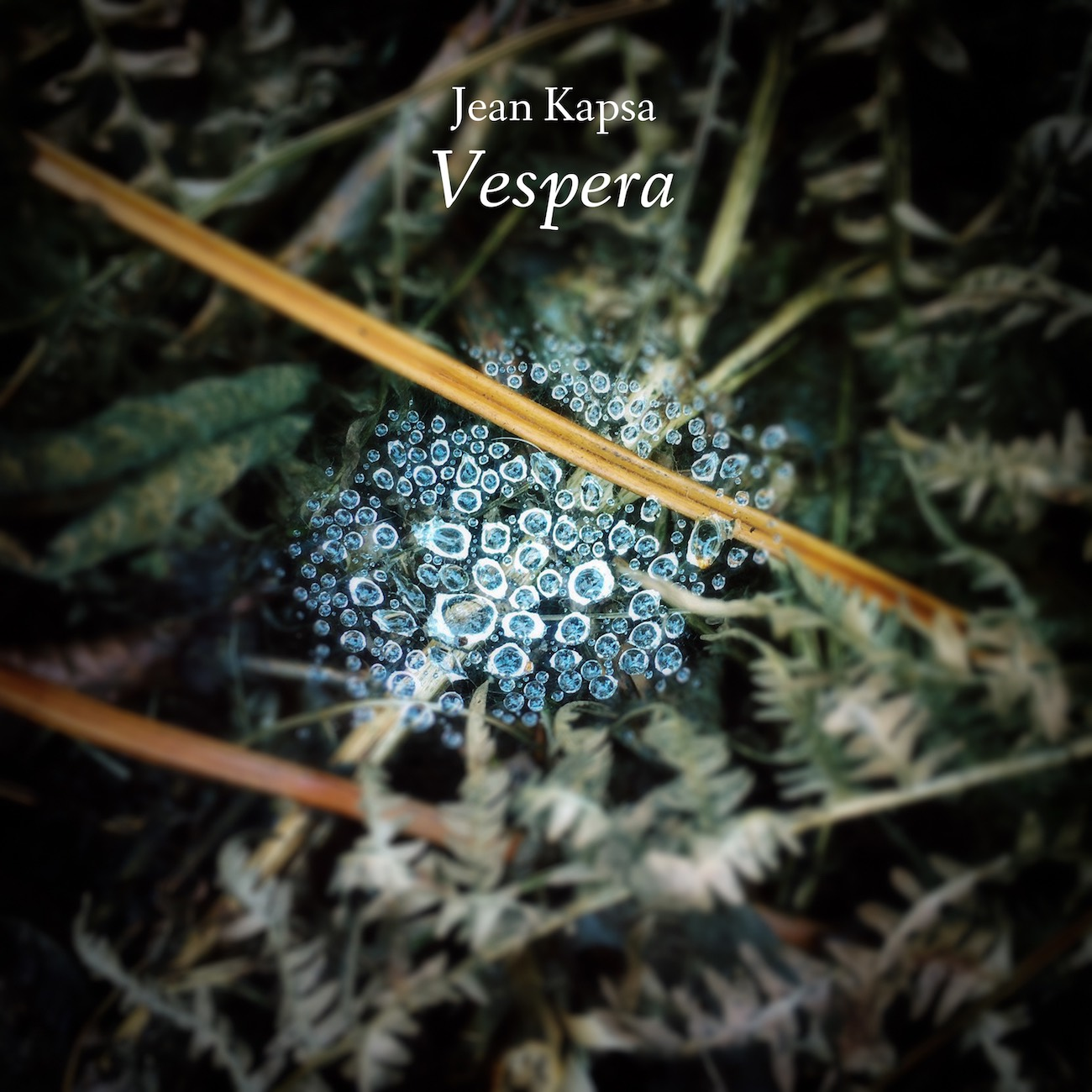 Nouvel album : Vespera